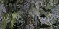cliff texture 41.jpg