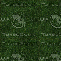 grass_large.png