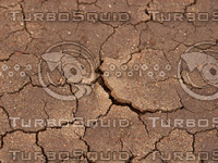 cracked mud photo