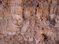 Reddish Brown Soil Wall 20090107 079