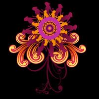 Psychedelic Flower w/matte