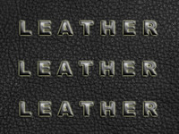 Lether0002a.bmp