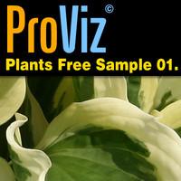 3dRender Pro-Viz Plants Free Sample 01