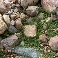 Rocksandgrass.png