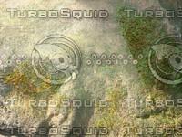 Texture00065.jpg