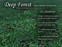 Idiomorf Deep Forest set 5 Groundcover