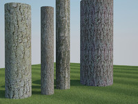 4 Tree Barks