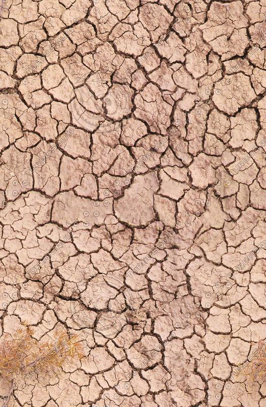 cracked-ground-2.jpg