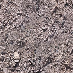 dusty.jpg