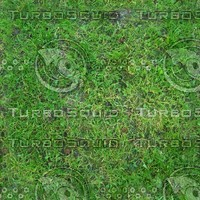 Perfect hi-res tiled grass texture 4