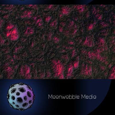 moonwobblemedia_bio_mesh_tn.jpg