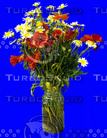 plant_113.jpg