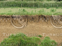 riverbank texture 6.jpg