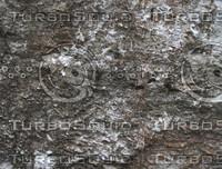 taihu stone 35