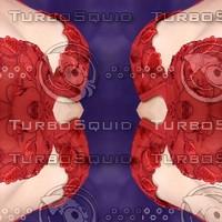 texture-12.jpg