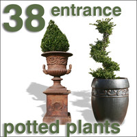 Cut Out - 38 plants for entrance area