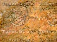 Rock 20090119 112