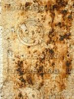Wall Scorch 20090129 042