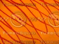 Carpet 20090210a 025