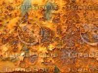 Metal Rust 20090328 049