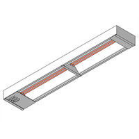 APW Wyott FD Overhead Warmer (2 Elements)