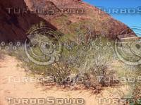 Las Vegas Desert 2.jpg