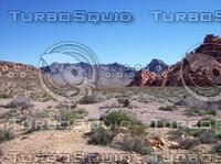 Las Vegas Desert 3.jpg