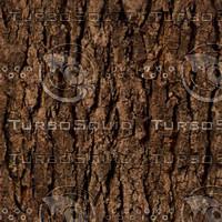 Tree Bark Tileable