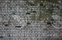 Old brick 42