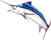 fish 13.ai
