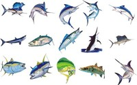 fishs.ai