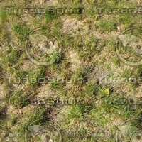 Perfect hi-res tiled grass texture 2