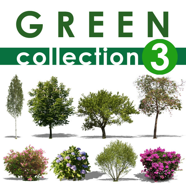 green collection 3.jpg