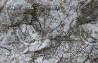 taihu stone 14