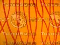 Carpet 20090210a 023