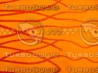 Carpet 20090210a 026