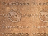Metal Rust 20090303 017