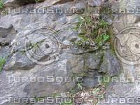 Rock  hill 20090320 021