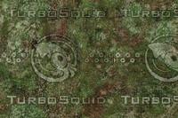 Alientexture010-Abbagrabba.jpg