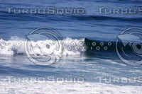 Baja Wave