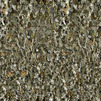 Seamless tileable 1024 by 1024 mossy rock