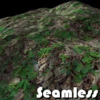 Grass Forest Texture 6