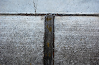 Cement ground texture