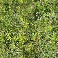 Perfect hi-res tiled grass texture 3