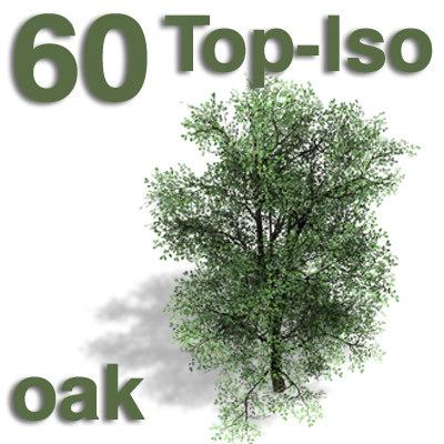 top_oak.jpg