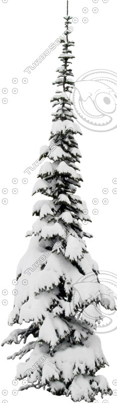 wintertree15.psd