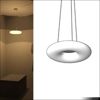Lamp Ceiling Suspended 00805se