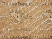 Carpet 20090210a 041