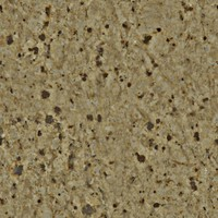 Seamless tileable 2048x2048 granite texture
