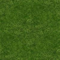 Seamless tileable 1024x1024 grass texture